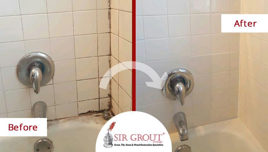 Our grout cleaning experts in lakeview illinois steamed away all the mold and mildew in this shower for How to clean bathroom grout mold