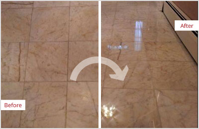 Sir Grout Chicago Tan Marble Hone and Polish
