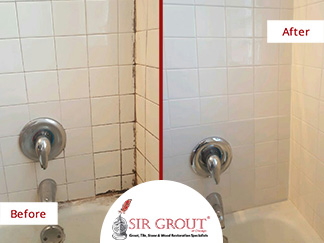 Before and After Picture of a Grout Cleaning Service on a Tile Bathroom in Lakeview, IL