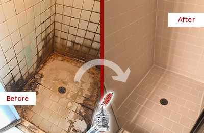 Before and After Picture of a Round Lake Beach Ceramic Shower Cleaned to Remove Grime